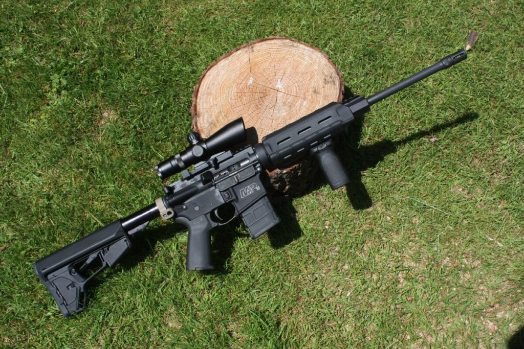 """Pacific Northwest gun prohibition groups want to ban so-called """"assault weapons."""" (Dave Workman photo)"""