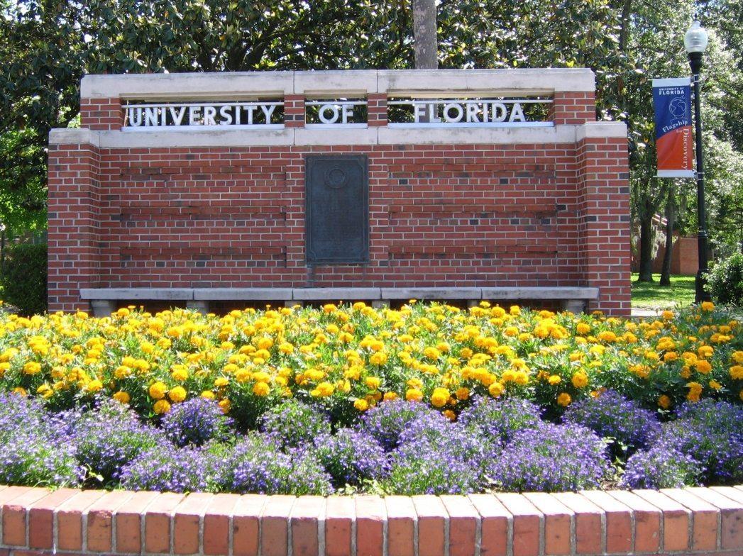 University of Florida prof says