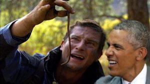 Obama - worm
