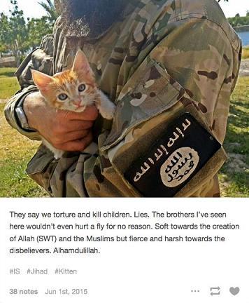 is-kittens