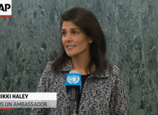 Haley United Nations