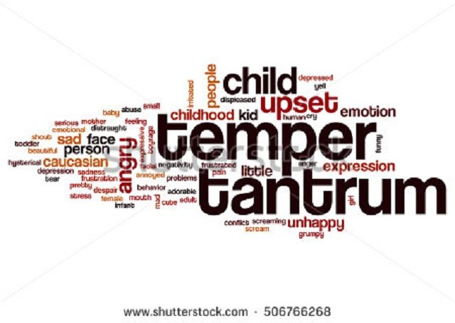 temper tantrum democrats