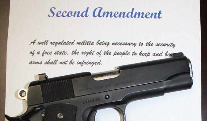 gun disarmament Second Amendment