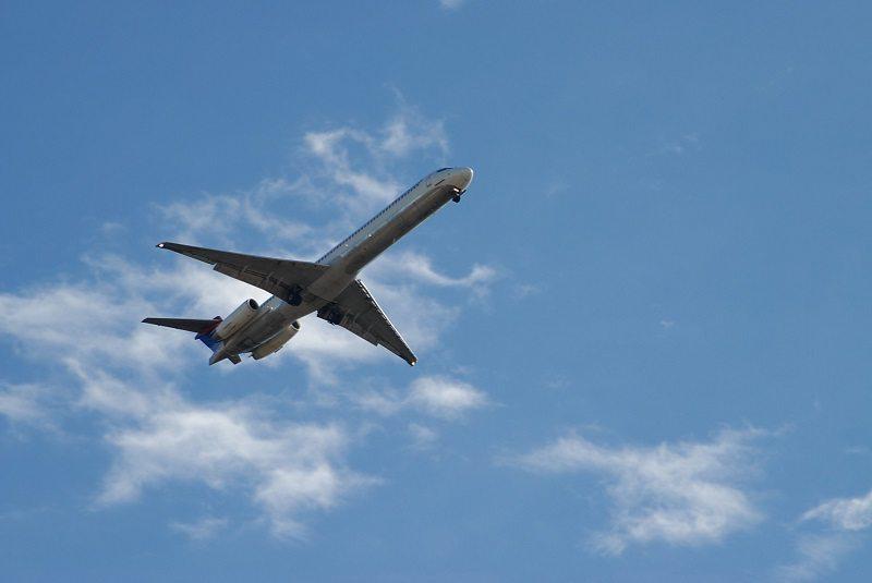 commercial flights illegals