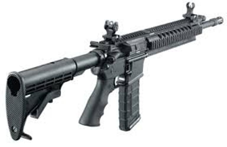 florida gun bill