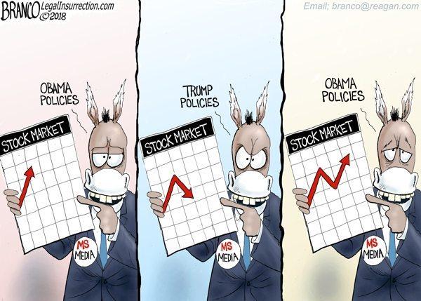 Trump stock media up