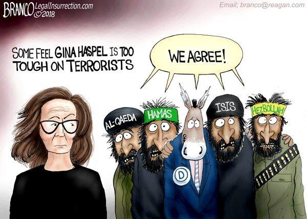 Gina Haspel terrorists