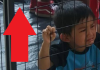 kids cages
