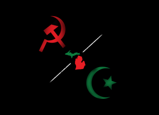 Michigan red green axis