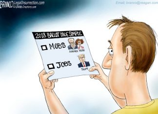 mobs jobs election