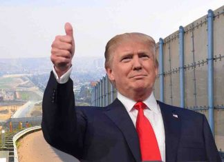 GoFundMe Build the wall #GoFundTheWall