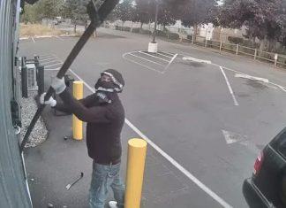 sock and underwear burglar