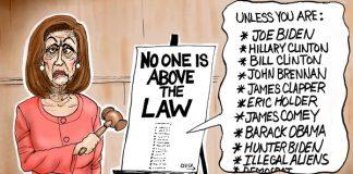 fine print Democrats law