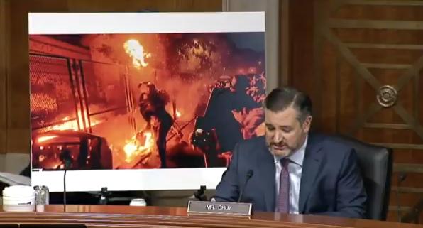 Senate Antifa