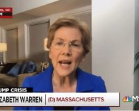 Video: Elizabeth Warren Accuses Trump Of 'Flirting With Treason'